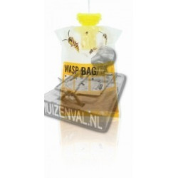 Wespenval - Wasp-Trap